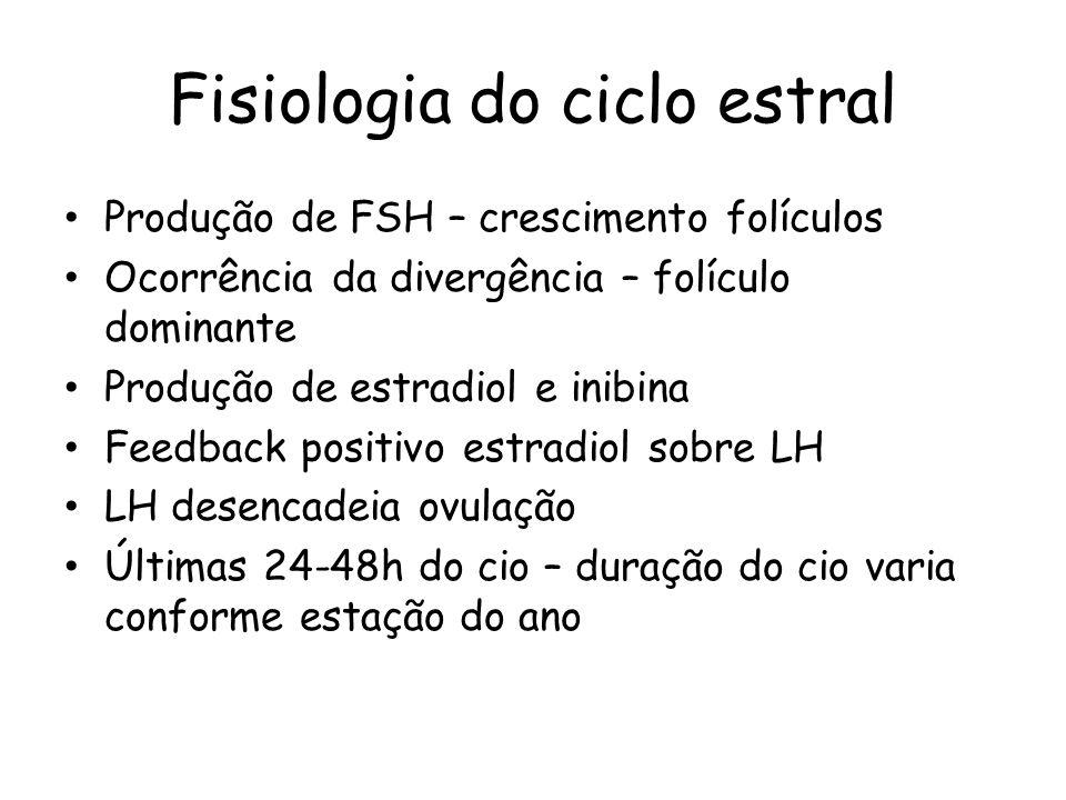 Fisiologia do ciclo estral Produção de FSH – crescimento folículos Ocorrência da divergência – folículo dominante Produção de estradiol e inibina Feed