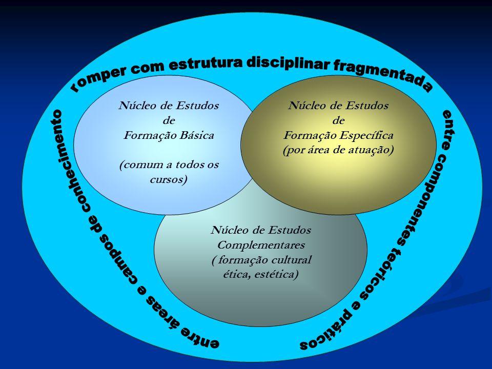 Núcleo de Estudos Complementares ( formação cultural ética, estética) Núcleo de Estudos de Formação Básica (comum a todos os cursos) Núcleo de Estudos