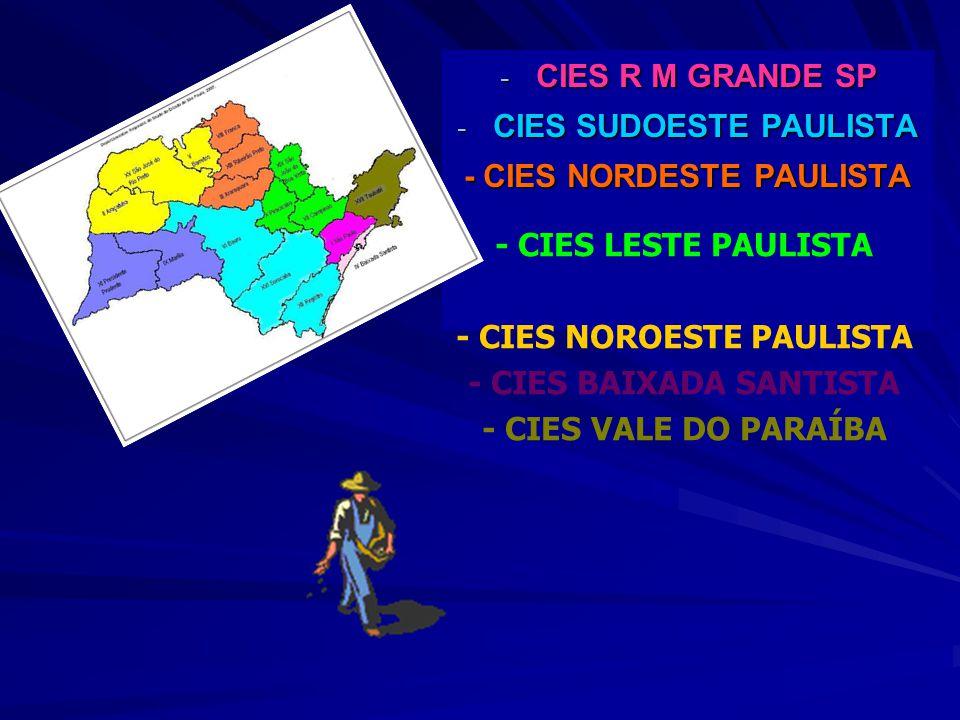 - CIES R M GRANDE SP - CIES SUDOESTE PAULISTA - CIES NORDESTE PAULISTA - CIES LESTE PAULISTA - CIES OESTE PAULISTA - CIES NOROESTE PAULISTA - CIES BAI