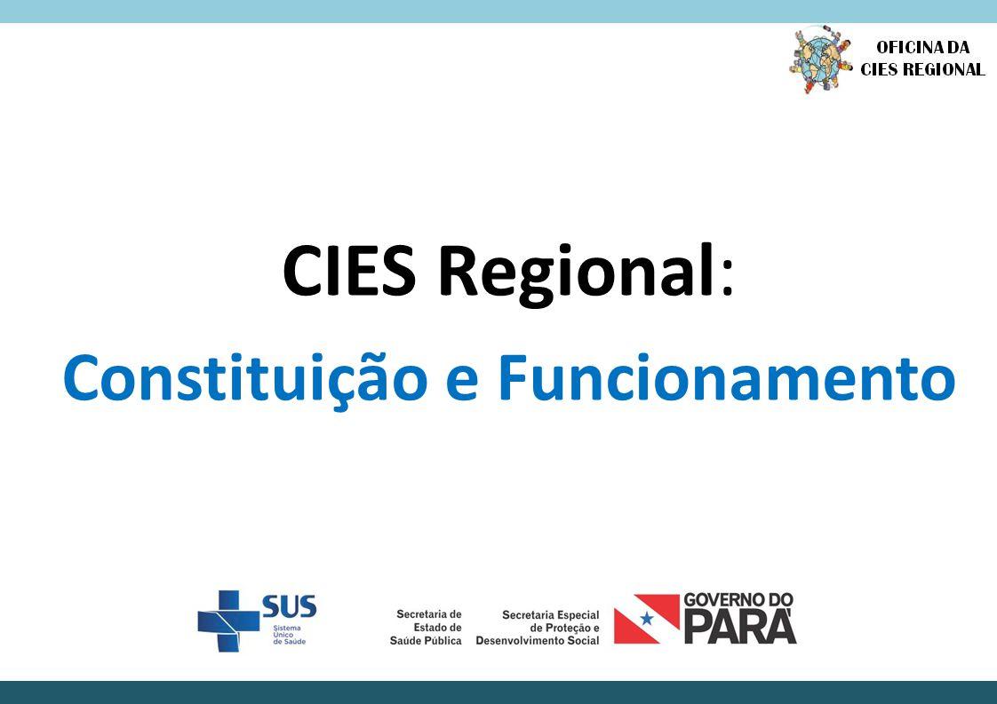 Pactos e ações indispensáveis ao funcionamento da CIES: Elaboração e implementação do PAREPS.