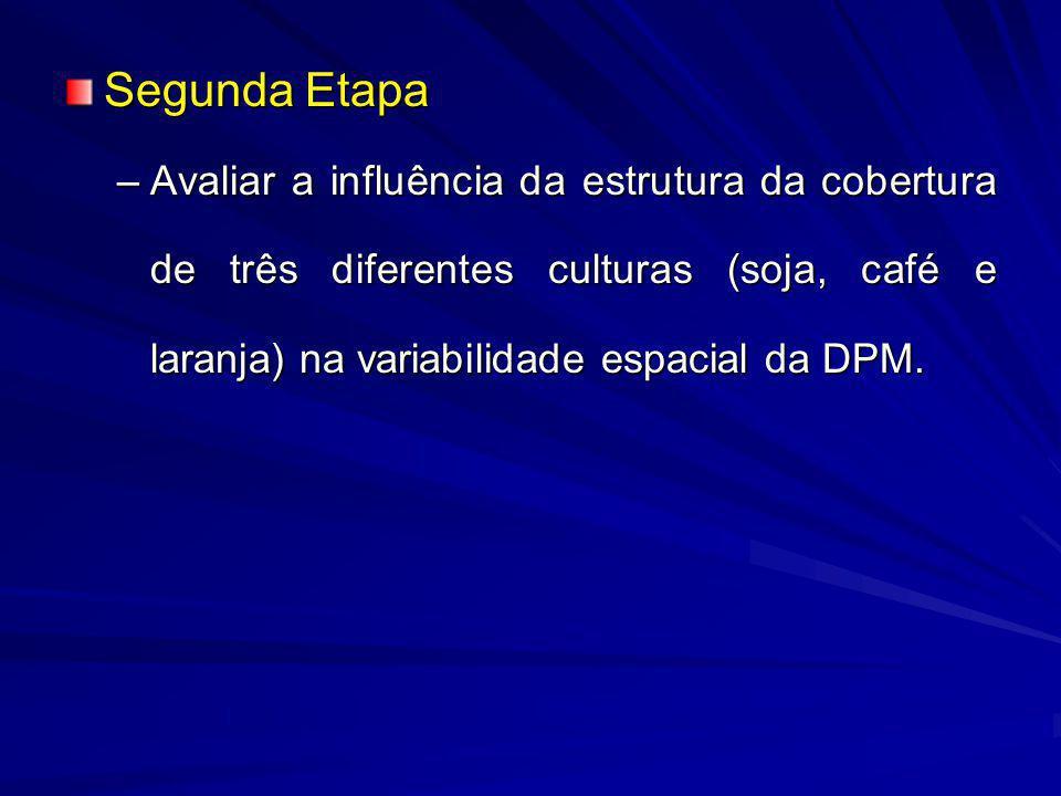 Segunda Etapa –Avaliar a influência da estrutura da cobertura de três diferentes culturas (soja, café e laranja) na variabilidade espacial da DPM.