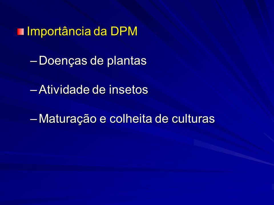 Cultura/PosiçãoAnoInícioFinal n*Dif.(min)n*Dif.