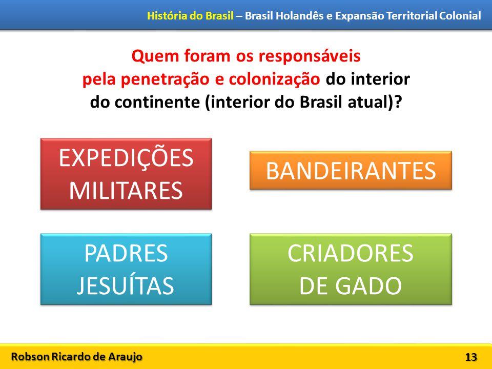 Robson Ricardo de Araujo História do Brasil – Brasil Holandês e Expansão Territorial Colonial 13 Quem foram os responsáveis pela penetração e colonização do interior do continente (interior do Brasil atual).