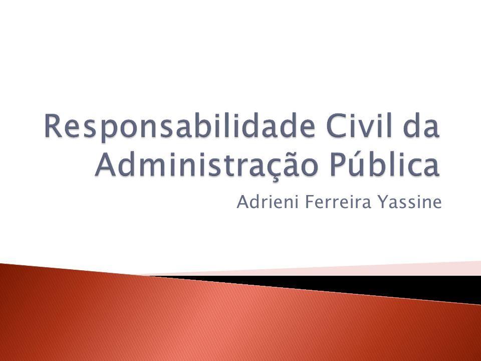 Adrieni Ferreira Yassine