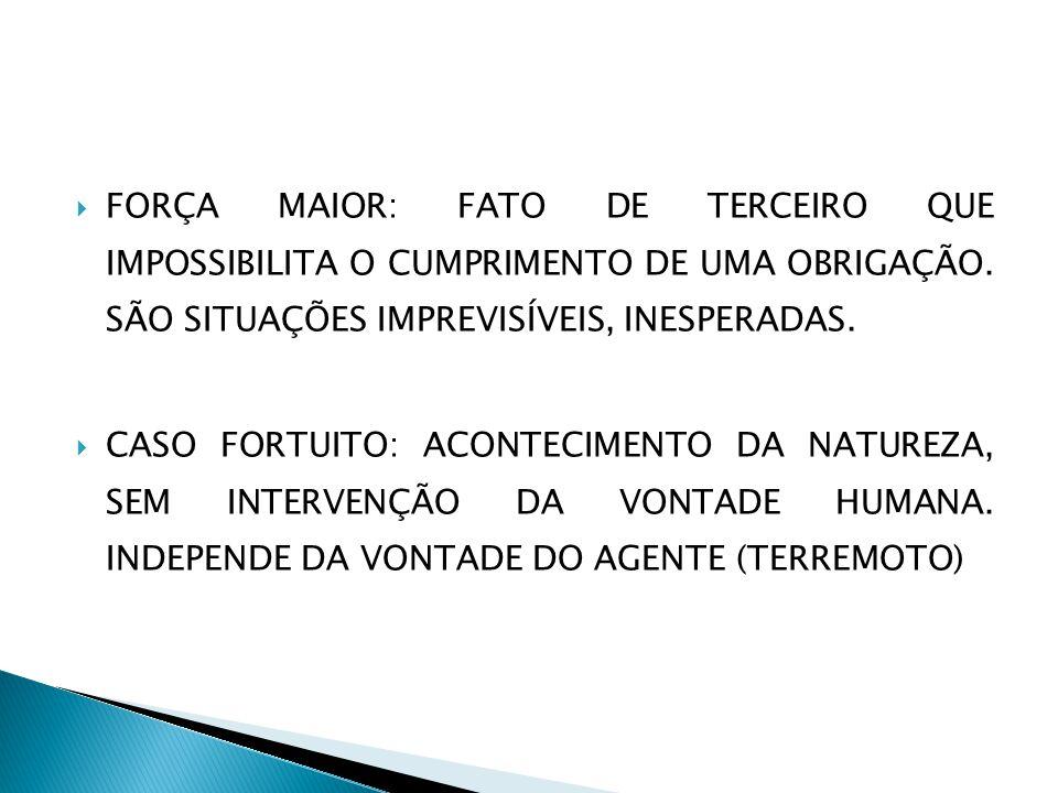  FORÇA MAIOR: FATO DE TERCEIRO QUE IMPOSSIBILITA O CUMPRIMENTO DE UMA OBRIGAÇÃO.