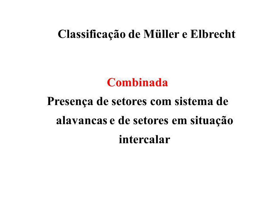 Classificação de Müller e Elbrecht Classificação de Müller e Elbrecht Alavanca Presença de extremidade livre com sistema de alavancas Alavanca Presenç