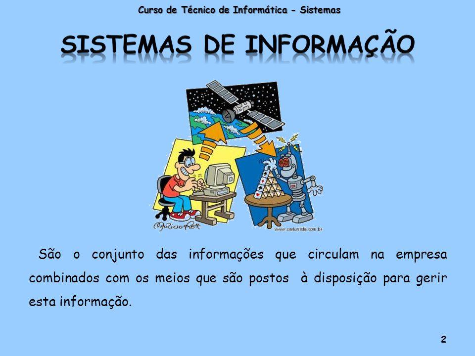 São o conjunto das informações que circulam na empresa combinados com os meios que são postos à disposição para gerir esta informação.