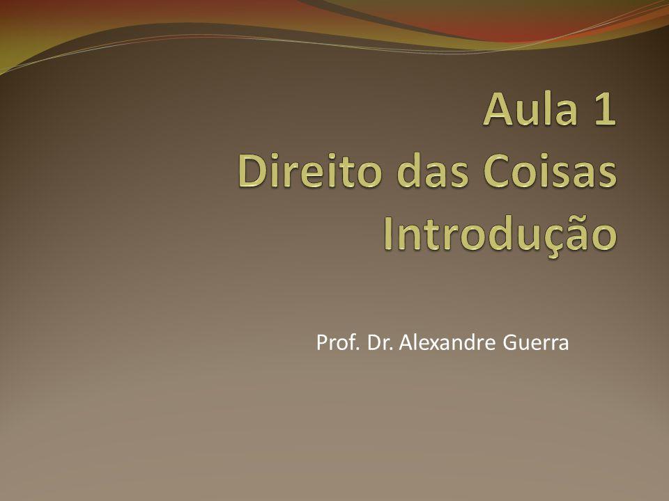 Prof. Dr. Alexandre Guerra