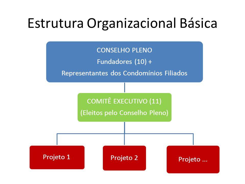 Estrutura Organizacional Básica CONSELHO PLENO Fundadores (10) + Representantes dos Condomínios Filiados COMITÊ EXECUTIVO (11) (Eleitos pelo Conselho Pleno) Projeto 1 Projeto 2 Projeto...
