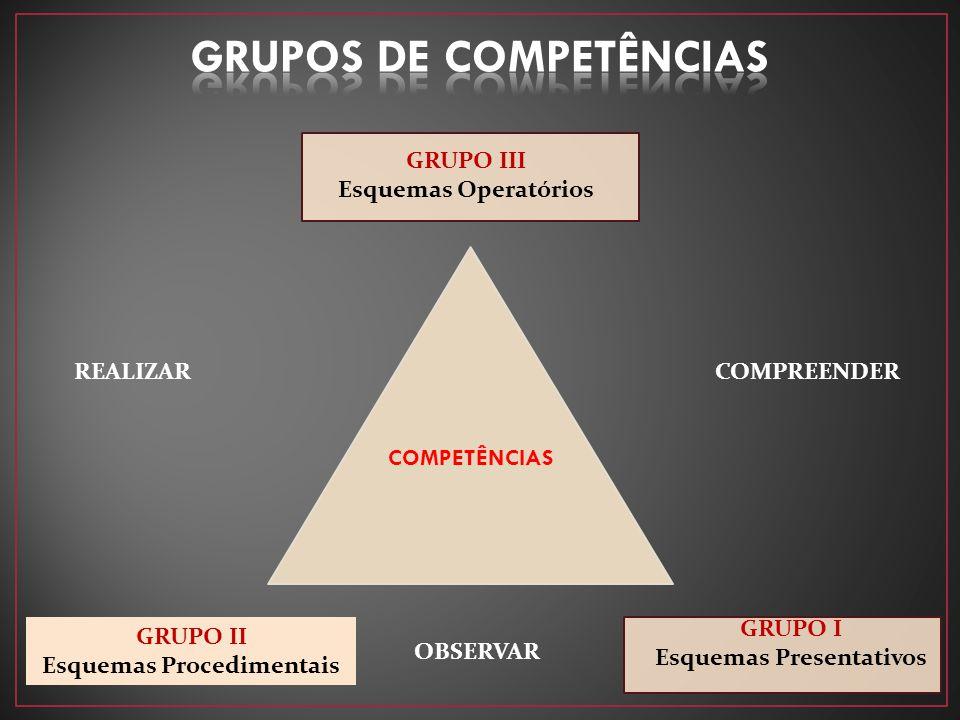 GRUPO III Esquemas Operatórios REALIZAR COMPREENDER GRUPO II Esquemas Procedimentais OBSERVAR GRUPO I Esquemas Presentativos COMPETÊNCIAS