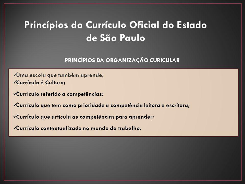 PRINCÍPIOS DA ORGANIZAÇÃO CURICULAR Uma escola que também aprende; Currículo é Cultura; Currículo referido a competências; Currículo que tem como prio