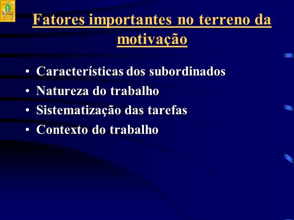 Fatores importantes no terreno da motivação Características dos subordinadosCaracterísticas dos subordinados Natureza do trabalhoNatureza do trabalho Sistematização das tarefasSistematização das tarefas Contexto do trabalhoContexto do trabalho