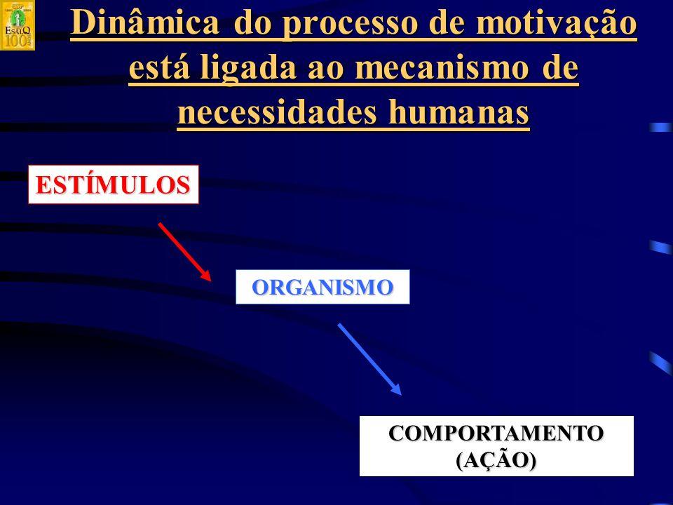 Dinâmica do processo de motivação está ligada ao mecanismo de necessidades humanas ESTÍMULOS ORGANISMO COMPORTAMENTO (AÇÃO)