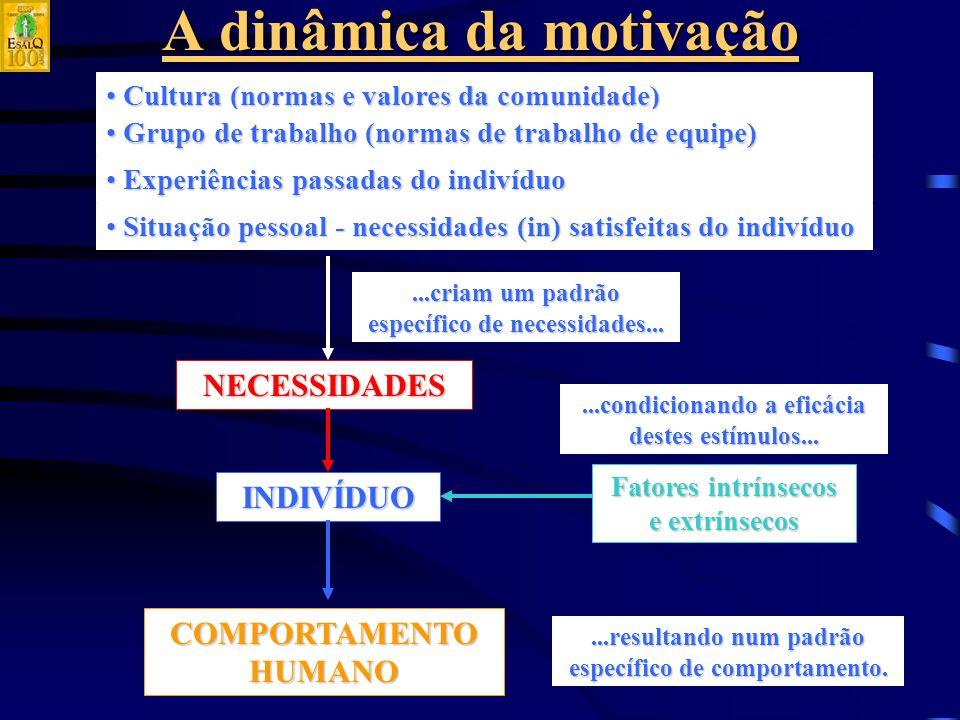 A dinâmica da motivação NECESSIDADES INDIVÍDUO COMPORTAMENTO HUMANO Cultura (normas e valores da comunidade) Cultura (normas e valores da comunidade) Grupo de trabalho (normas de trabalho de equipe) Grupo de trabalho (normas de trabalho de equipe) Experiências passadas do indivíduo Experiências passadas do indivíduo Situação pessoal - necessidades (in) satisfeitas do indivíduo Situação pessoal - necessidades (in) satisfeitas do indivíduo...criam um padrão específico de necessidades......resultando num padrão específico de comportamento.