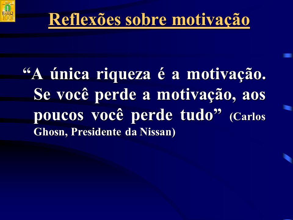 Reflexões sobre motivação A única riqueza é a motivação.