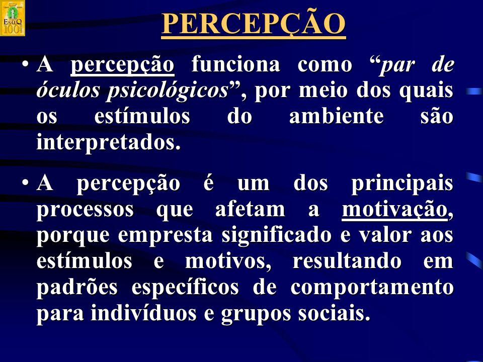 PERCEPÇÃO A percepção funciona como par de óculos psicológicos , por meio dos quais os estímulos do ambiente são interpretados.A percepção funciona como par de óculos psicológicos , por meio dos quais os estímulos do ambiente são interpretados.