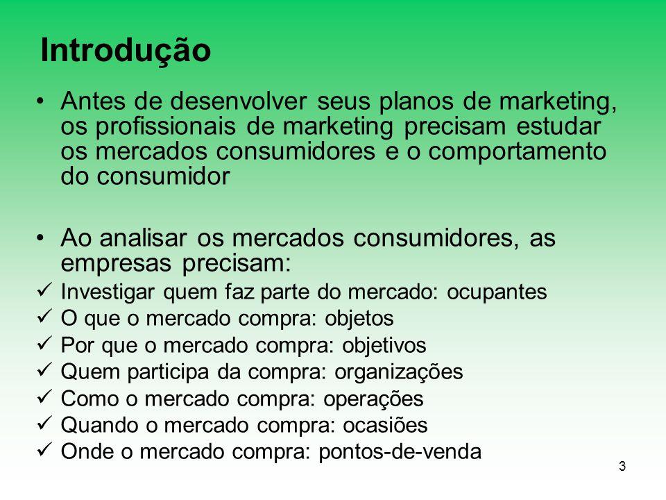 3 Introdução Antes de desenvolver seus planos de marketing, os profissionais de marketing precisam estudar os mercados consumidores e o comportamento