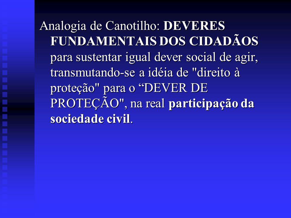 Analogia de Canotilho: DEVERES FUNDAMENTAIS DOS CIDADÃOS para sustentar igual dever social de agir, transmutando-se a idéia de