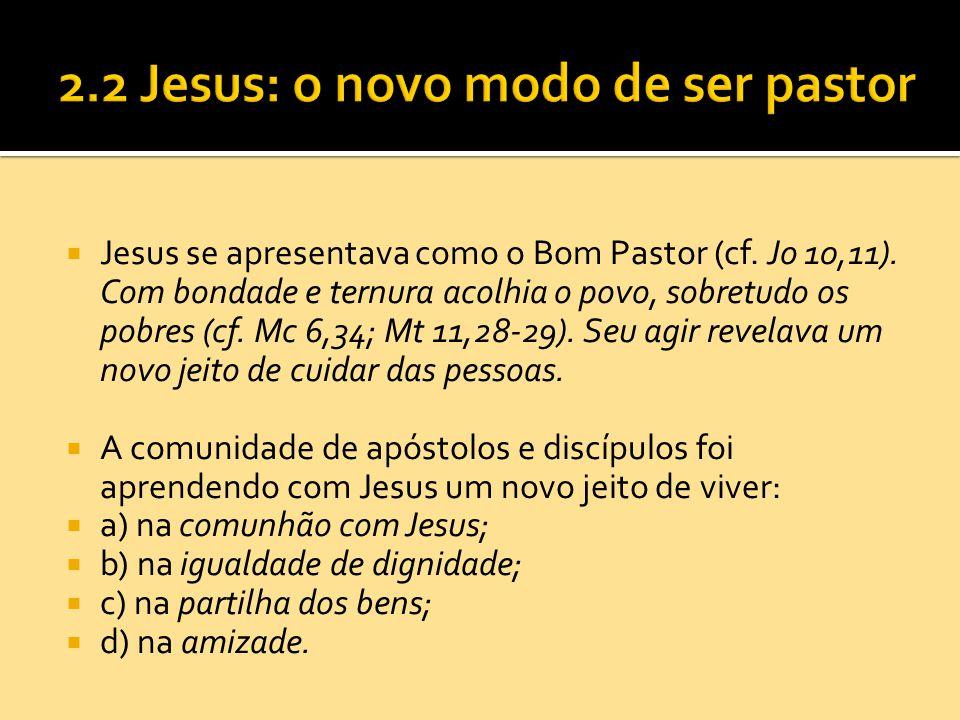  Jesus se apresentava como o Bom Pastor (cf. Jo 10,11). Com bondade e ternura acolhia o povo, sobretudo os pobres (cf. Mc 6,34; Mt 11,28-29). Seu agi