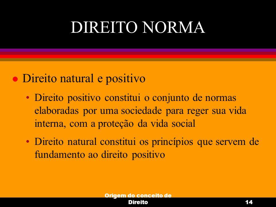 Origem do conceito de Direito14 DIREITO NORMA l Direito natural e positivo Direito positivo constitui o conjunto de normas elaboradas por uma sociedad