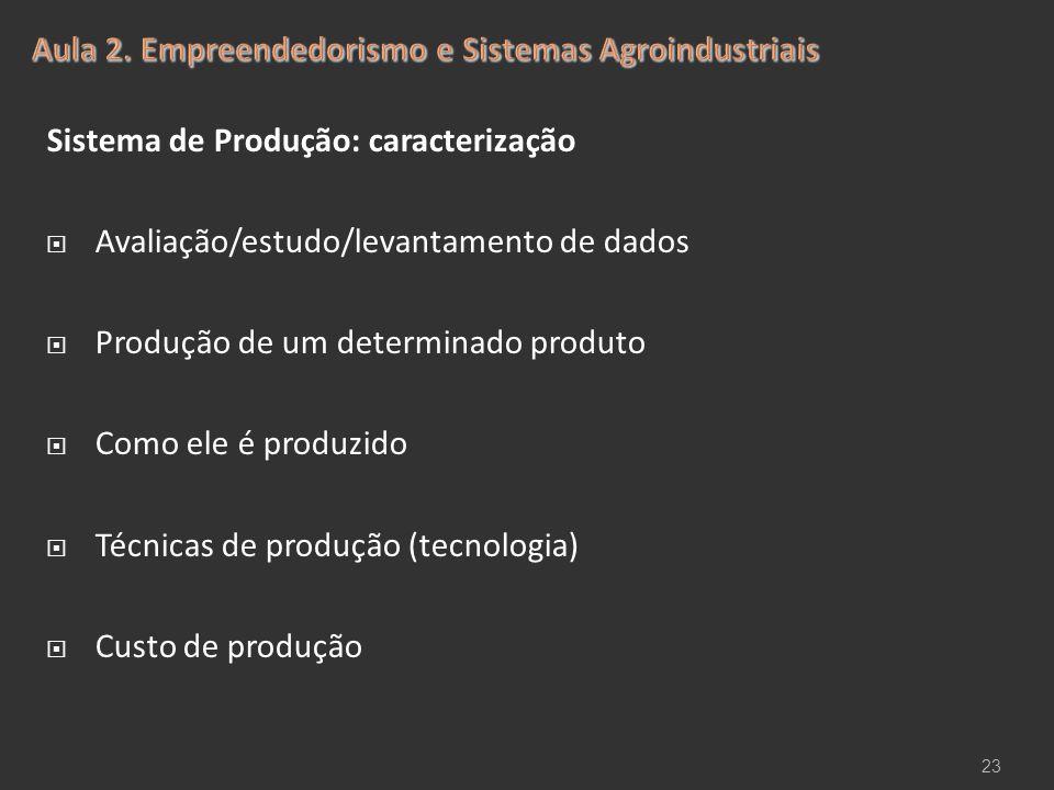 Sistema de Produção: caracterização  Avaliação/estudo/levantamento de dados  Produção de um determinado produto  Como ele é produzido  Técnicas de