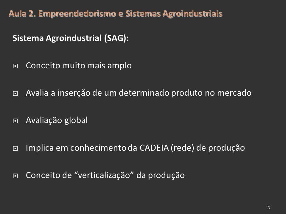 Sistema Agroindustrial (SAG):  Conceito muito mais amplo  Avalia a inserção de um determinado produto no mercado  Avaliação global  Implica em con