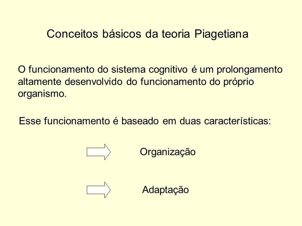 Conceitos básicos da teoria Piagetiana O funcionamento do sistema cognitivo é um prolongamento altamente desenvolvido do funcionamento do próprio organismo.