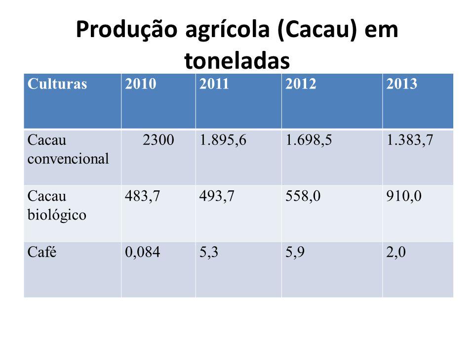 Produção agrícola (Cacau) em toneladas Culturas2010201120122013 Cacau convencional 23001.895,61.698,51.383,7 Cacau biológico 483,7493,7558,0910,0 Café0,0845,35,92,0