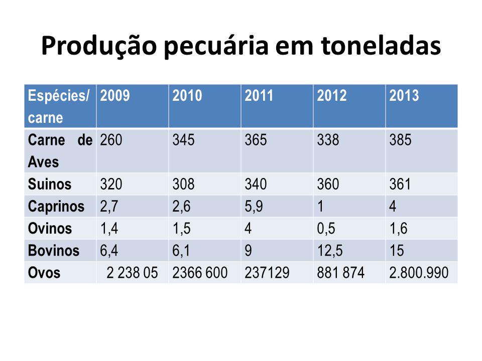 Produção pecuária em toneladas Espécies/ carne 20092010201120122013 Carne de Aves 260345365338385 Suinos 320308340360361 Caprinos 2,72,65,914 Ovinos 1