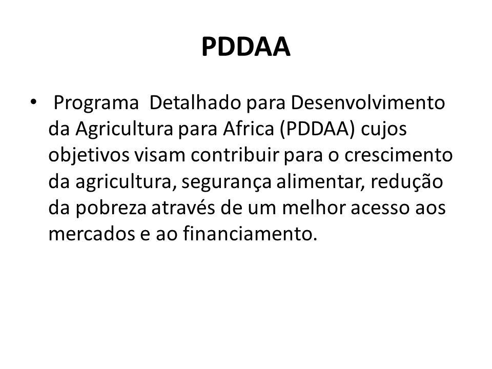 PDDAA Programa Detalhado para Desenvolvimento da Agricultura para Africa (PDDAA) cujos objetivos visam contribuir para o crescimento da agricultura, segurança alimentar, redução da pobreza através de um melhor acesso aos mercados e ao financiamento.