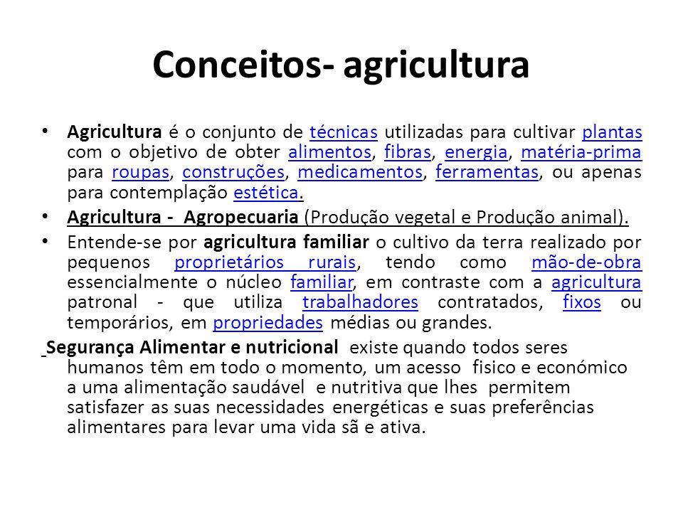 Conceitos- agricultura Agricultura é o conjunto de técnicas utilizadas para cultivar plantas com o objetivo de obter alimentos, fibras, energia, matér
