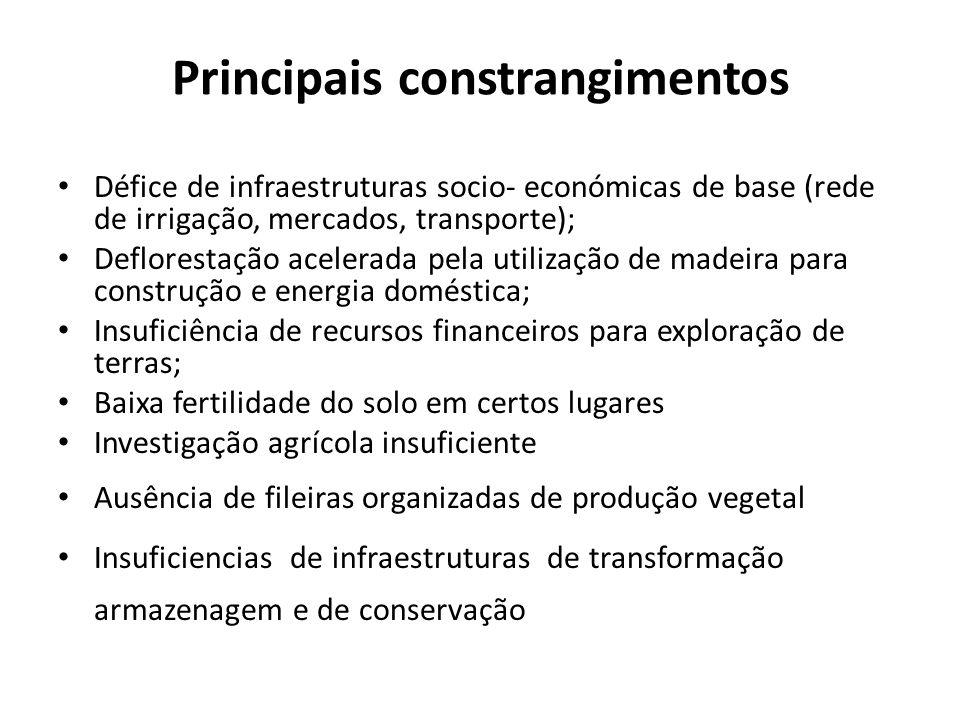 Principais constrangimentos Défice de infraestruturas socio- económicas de base (rede de irrigação, mercados, transporte); Deflorestação acelerada pel