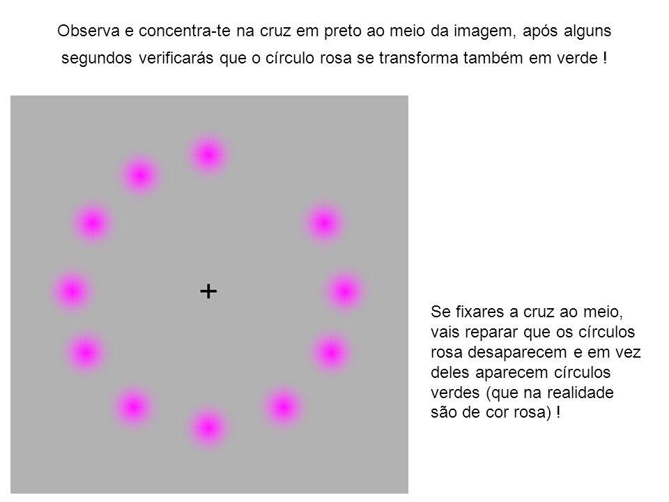 Observa e concentra-te na cruz em preto ao meio da imagem, após alguns segundos verificarás que o círculo rosa se transforma também em verde ! Se fixa