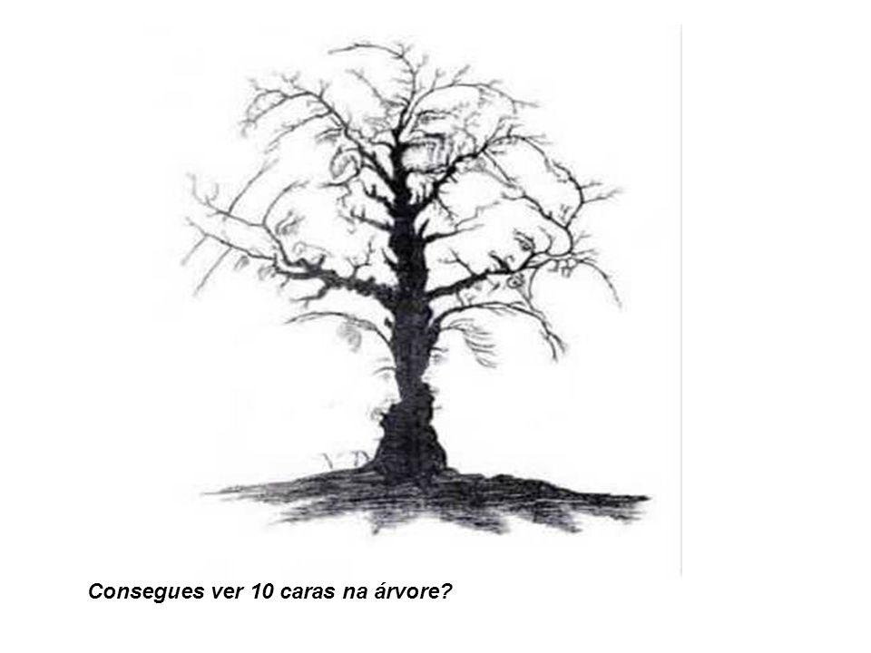 Consegues ver 10 caras na árvore?