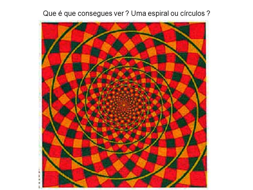 Que é que consegues ver ? Uma espiral ou círculos ?