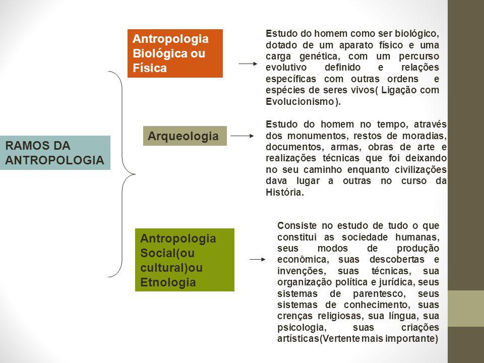 RAMOS DA ANTROPOLOGIA Antropologia Biológica ou Física Estudo do homem como ser biológico, dotado de um aparato físico e uma carga genética, com um pe
