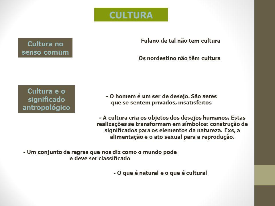 CULTURA Cultura no senso comum Fulano de tal não tem cultura Os nordestino não têm cultura - O homem é um ser de desejo. São seres que se sentem priva
