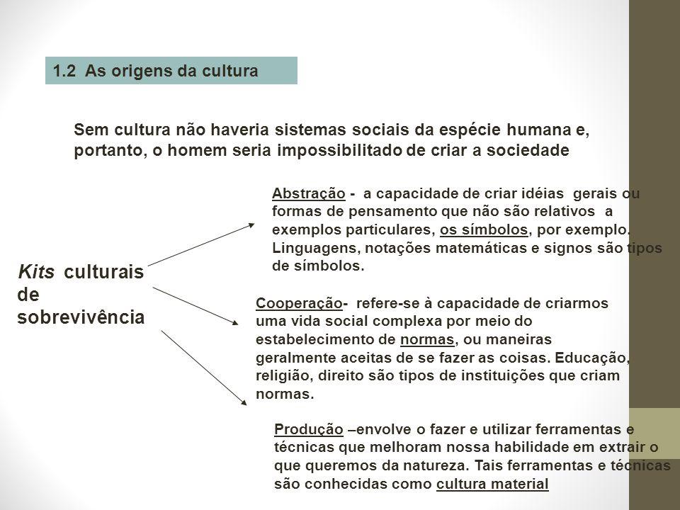 1.2 As origens da cultura Sem cultura não haveria sistemas sociais da espécie humana e, portanto, o homem seria impossibilitado de criar a sociedade K