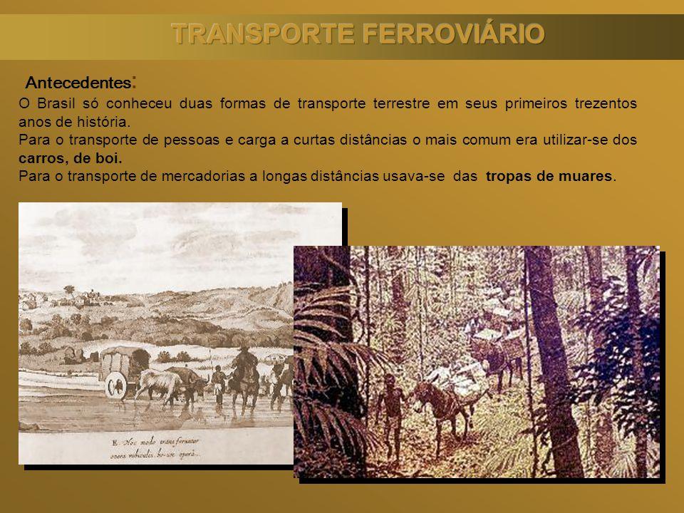 Antecedentes : O Brasil só conheceu duas formas de transporte terrestre em seus primeiros trezentos anos de história. Para o transporte de pessoas e c