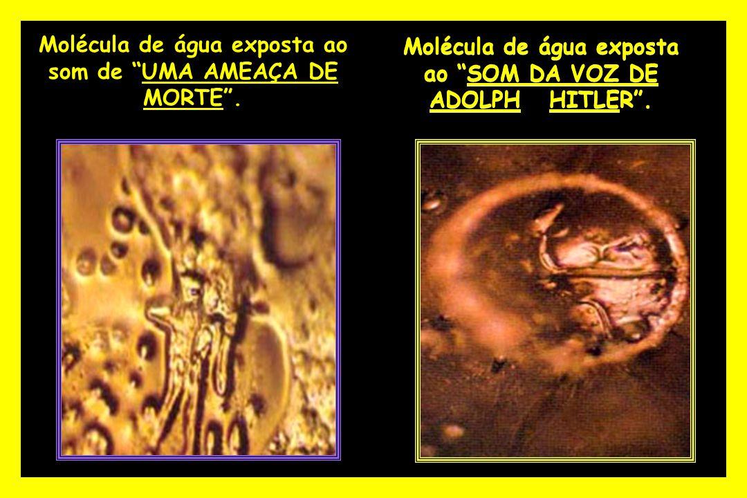 """Molécula de água exposta ao """"SOM DA VOZ DE ADOLPH HITLER"""". Molécula de água exposta ao som de """"UMA AMEAÇA DE MORTE""""."""