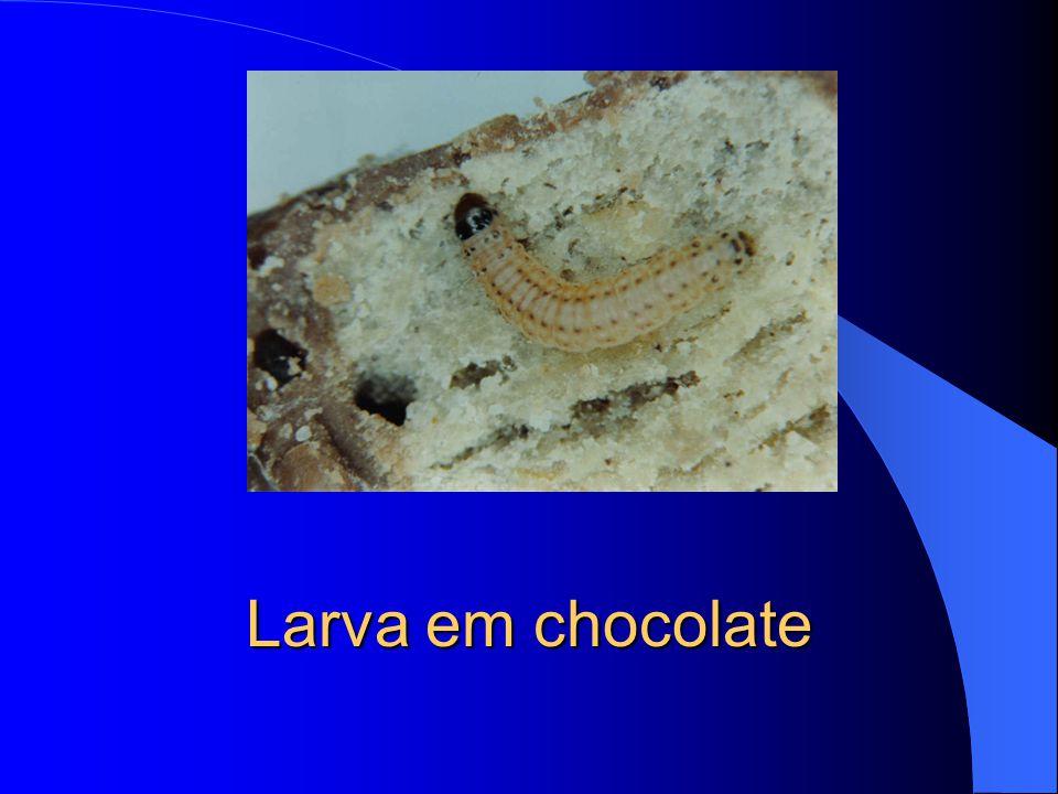 Chocolate com fezes de larvas