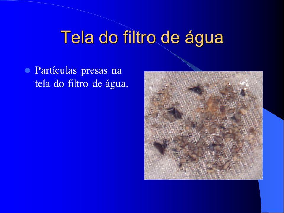 Tela do filtro de água Partículas presas na tela do filtro de água.