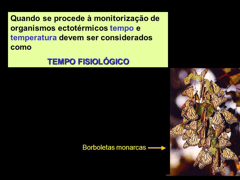 Quando se procede à monitorização de organismos ectotérmicos tempo e temperatura devem ser considerados como TEMPO FISIOLÓGICO Borboletas monarcas