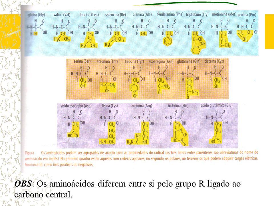 OBS: Os aminoácidos diferem entre si pelo grupo R ligado ao carbono central.