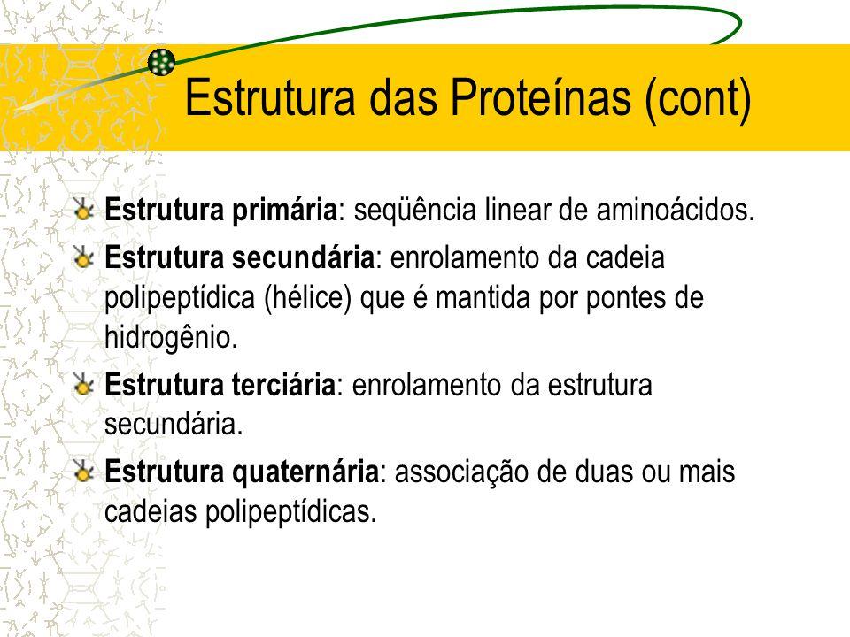 Estrutura das Proteínas (cont) Estrutura primária : seqüência linear de aminoácidos. Estrutura secundária : enrolamento da cadeia polipeptídica (hélic