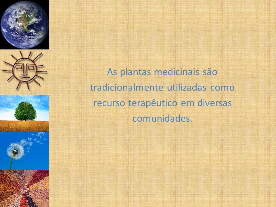 As plantas medicinais são tradicionalmente utilizadas como recurso terapêutico em diversas comunidades.