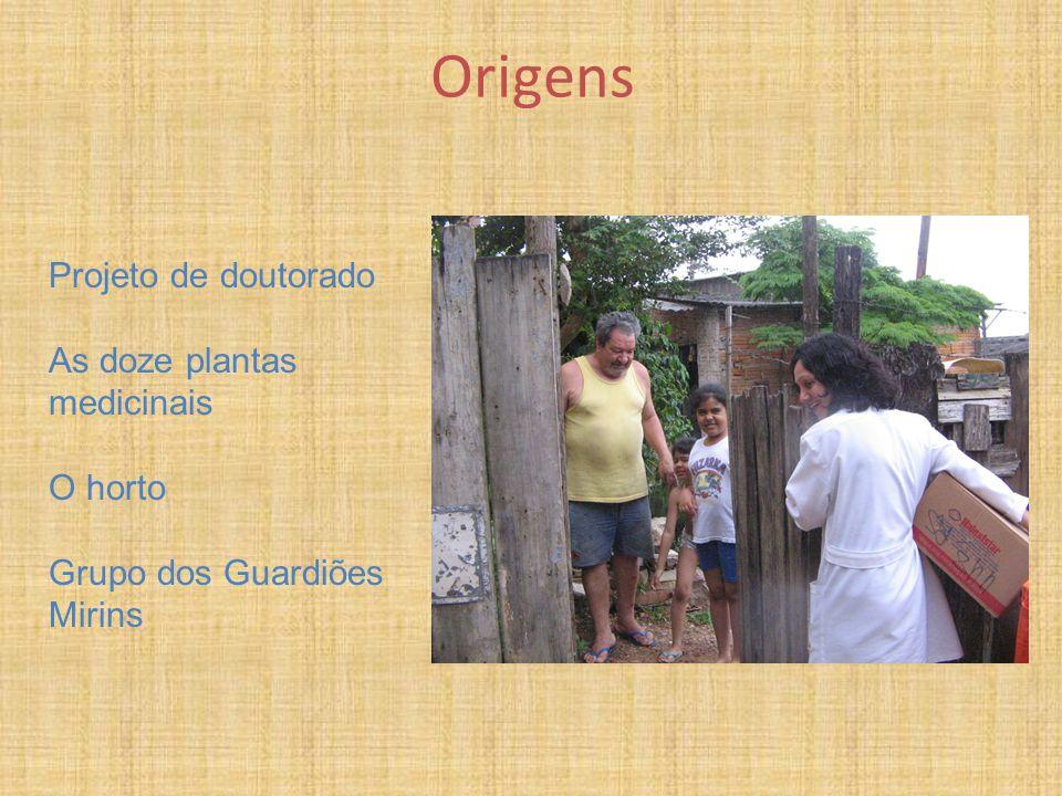 Origens Projeto de doutorado As doze plantas medicinais O horto Grupo dos Guardiões Mirins