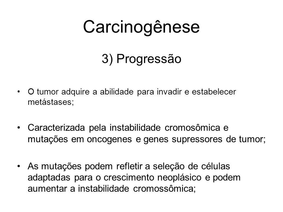 Carcinogênese 3) Progressão O tumor adquire a abilidade para invadir e estabelecer metástases; Caracterizada pela instabilidade cromosômica e mutações