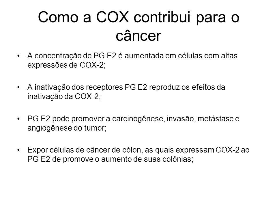 Como a COX contribui para o câncer A concentração de PG E2 é aumentada em células com altas expressões de COX-2; A inativação dos receptores PG E2 rep