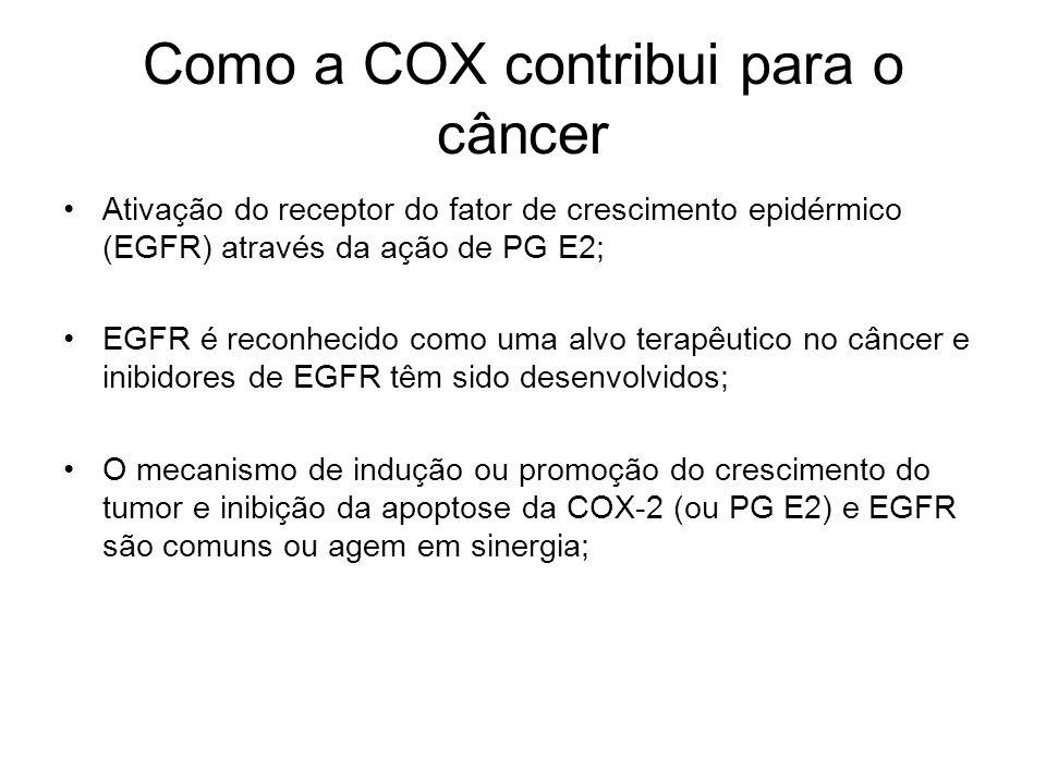 Como a COX contribui para o câncer Ativação do receptor do fator de crescimento epidérmico (EGFR) através da ação de PG E2; EGFR é reconhecido como um